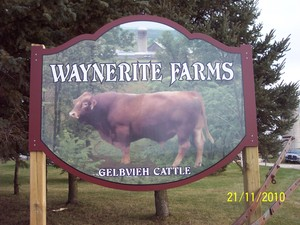 <b>Waynerite Farms</b>